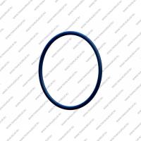 Резиновое кольцо гидротрансформатора (OD 64mm)