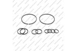 Комплект уплотнительных колец (10шт.)*