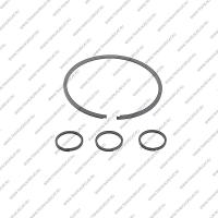 Комплект уплотнительных колец (4шт.)*